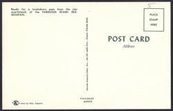 miami dolphins postcard